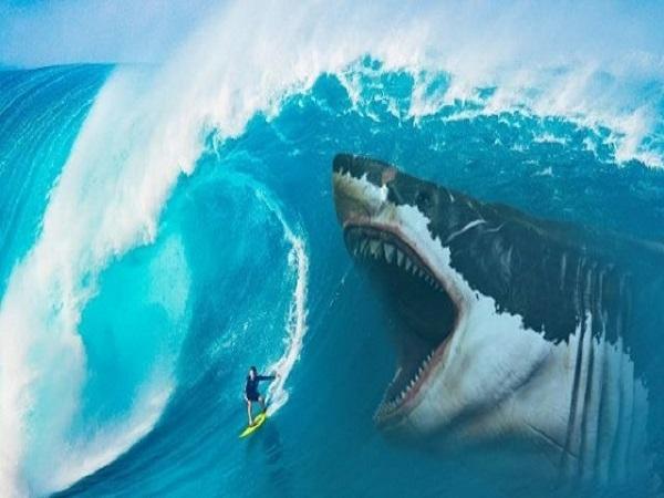 Mơ thấy cá mập có điềm báo gì và đánh con số nào?